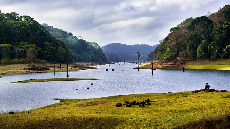 Thekkady- Time To Expose Yourself To Wildlife