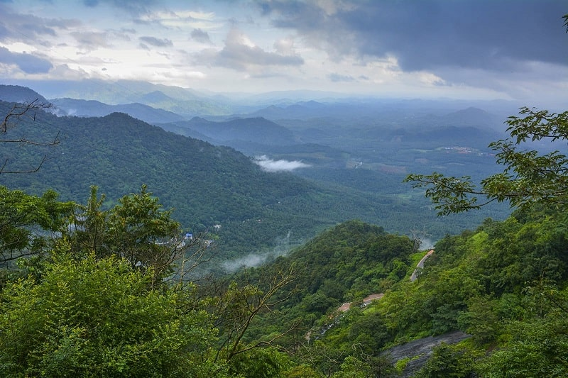 Wayanad- The Land Of Heaven